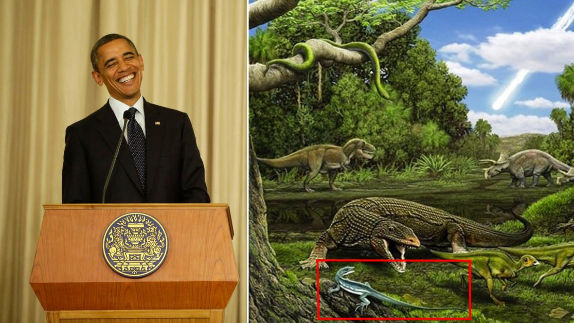 Barack Obama a Obamadon gracilis