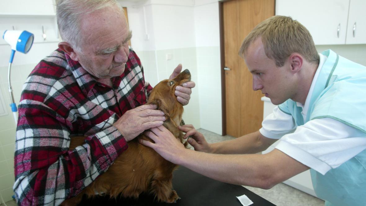 Návštěva veterináře