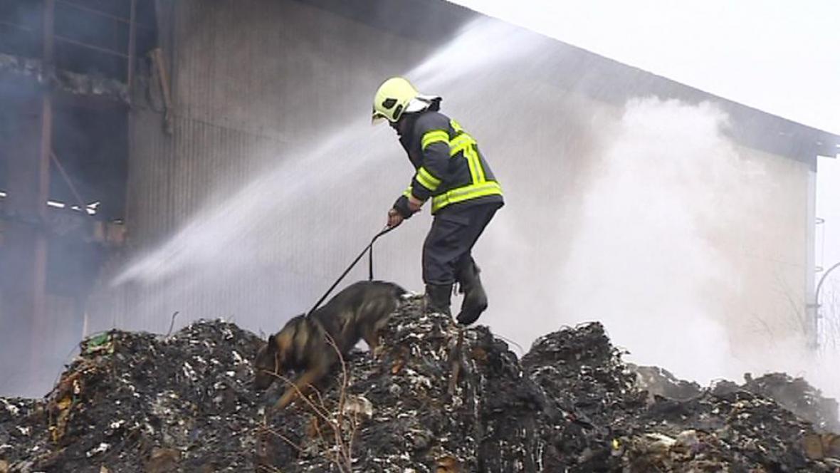 Požár odpadu