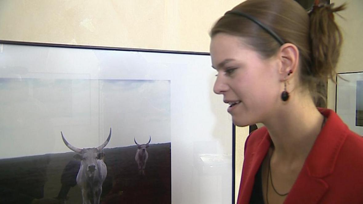 Kristýna Erbenová