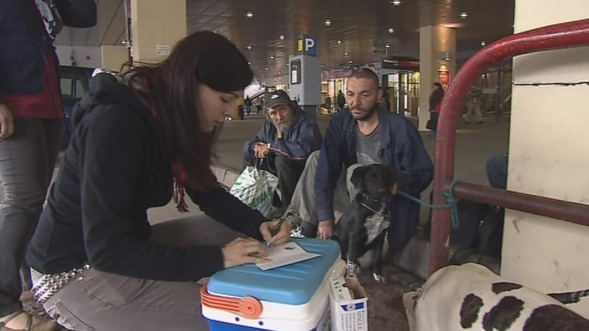Studentky farmacie očkují psy bezdomovců