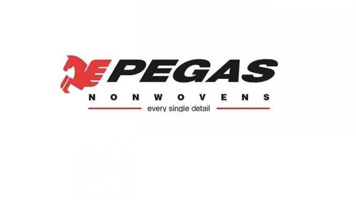 Logo Pegas Nonwovens