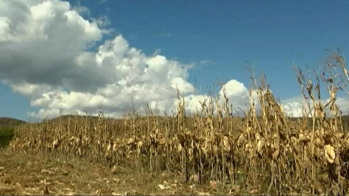 Sucho v Mexiku