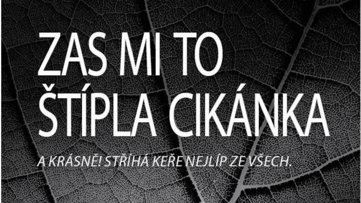 Kampaň proti diskriminaci Romů