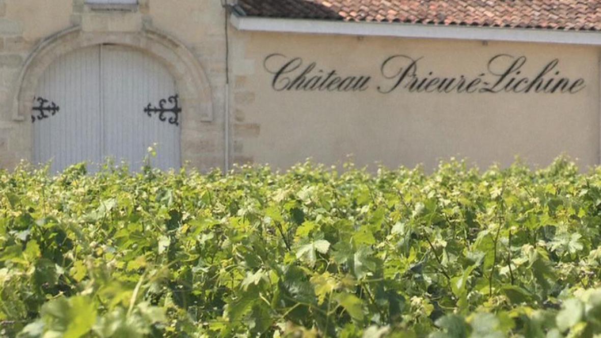 Vinice v oblasti Bordeaux