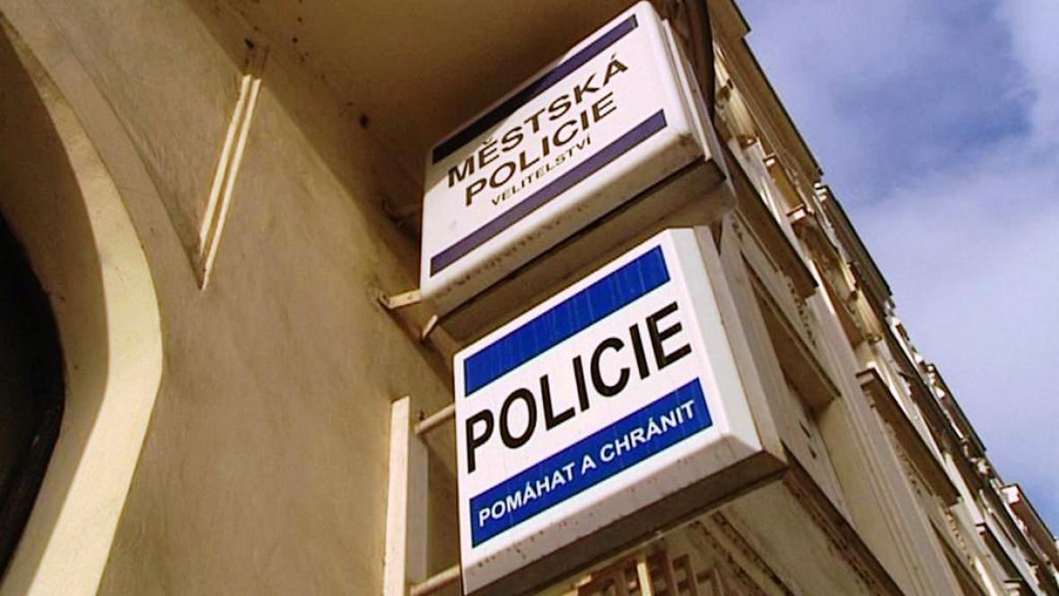Městská a státní policie