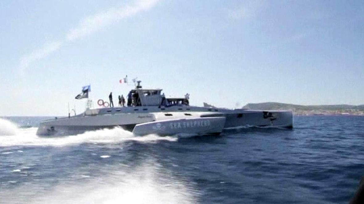 Poškozená loď organizace Sea Shepherd