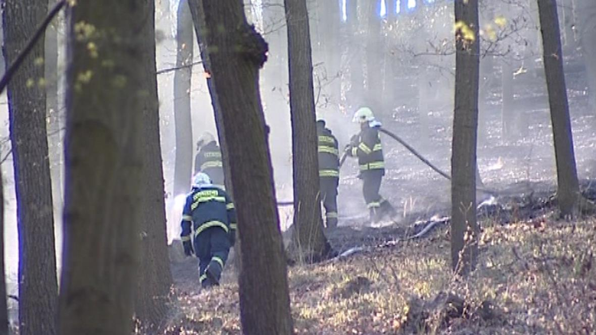 Zásah hasičů v lese