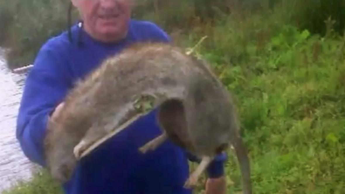 Brian Watson a obří krysa