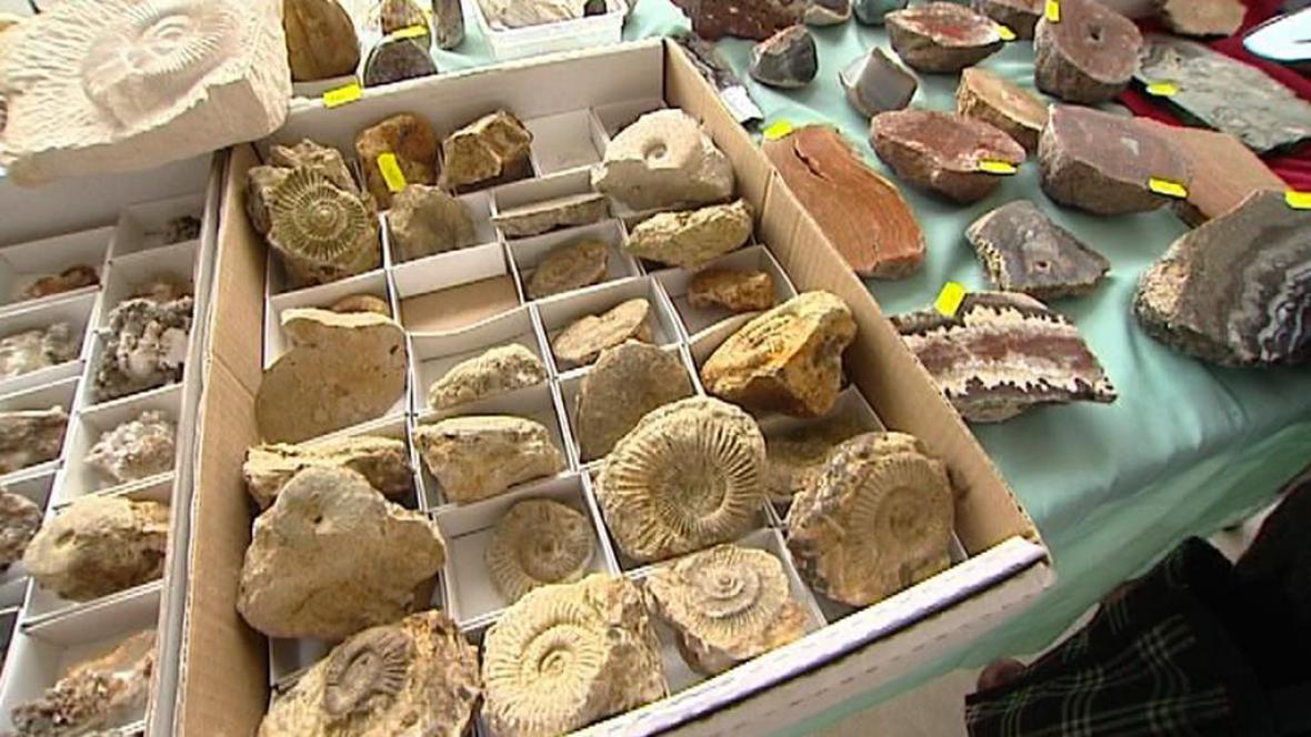 Kolekce vystavených minerálů