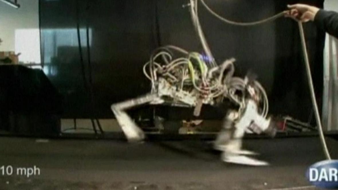 Robot Gepard