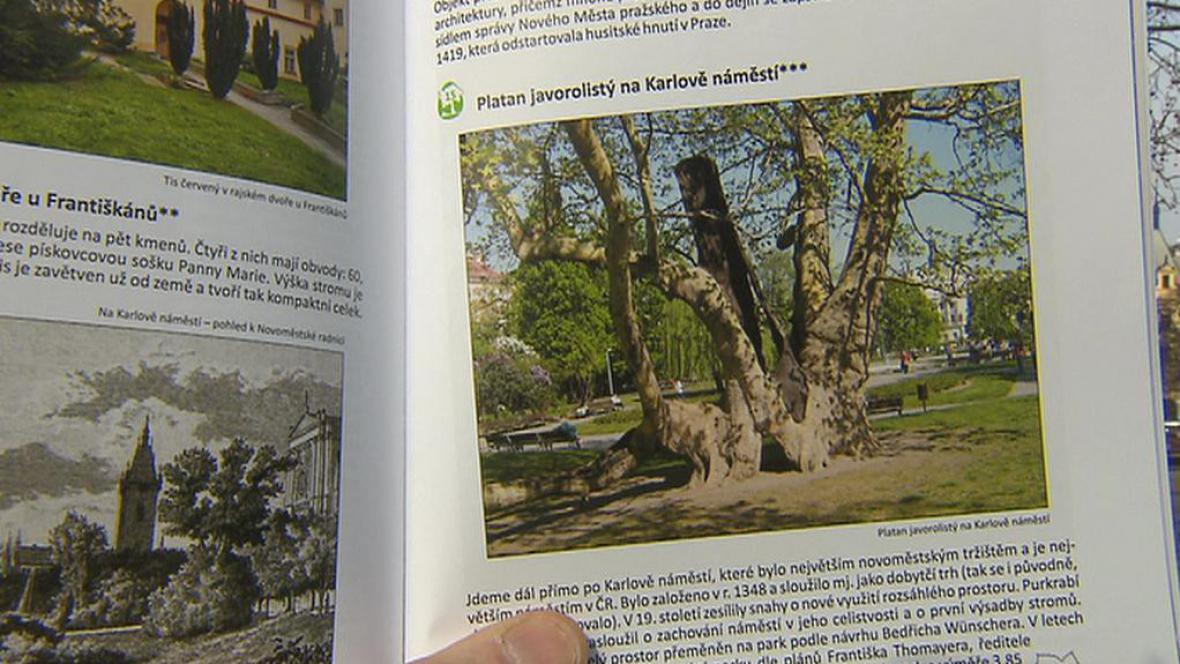 Památné stromy v nové publikaci