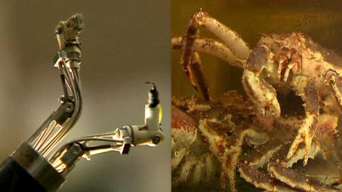 Robot Master se inspiroval u krabů