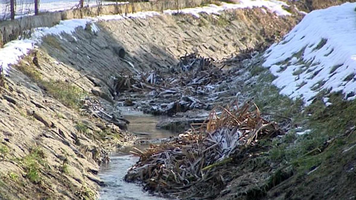 Zanesené koryto potoka