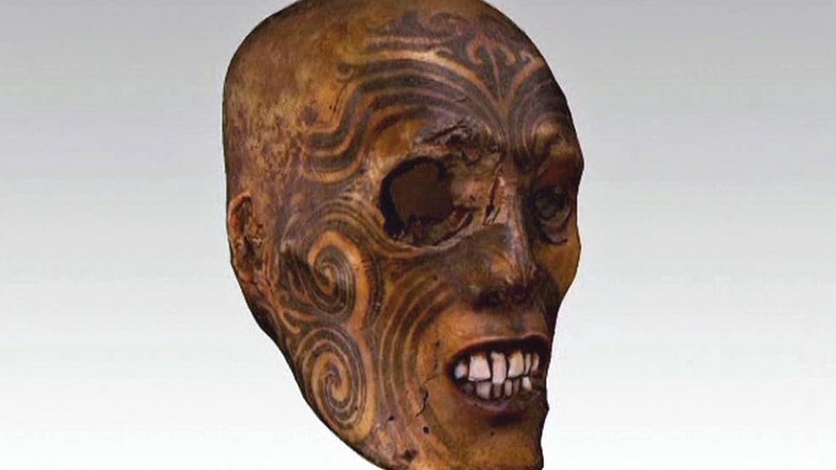 Tetovaná mumifikovaná maorská hlava