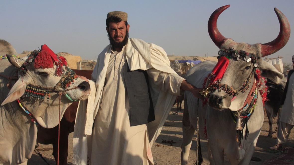 Obyvatelé Pákistánu