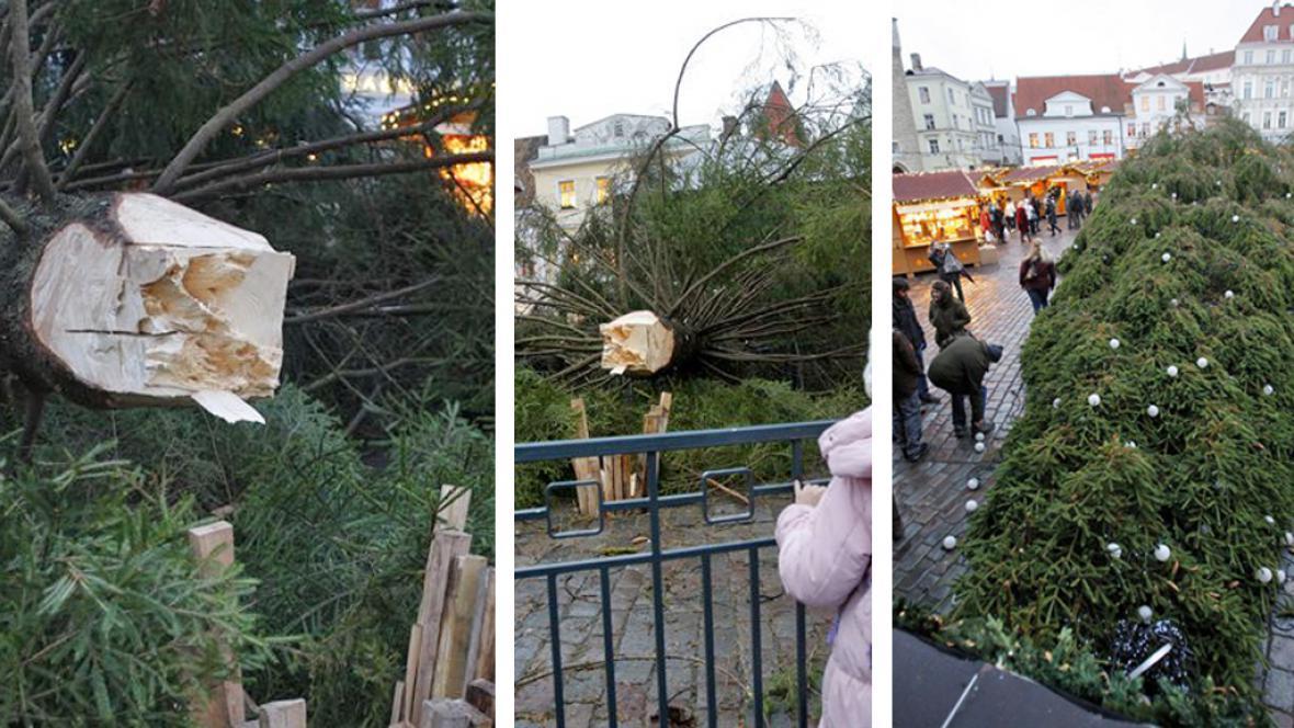 Zřícený vánoční strom v Tallinnu