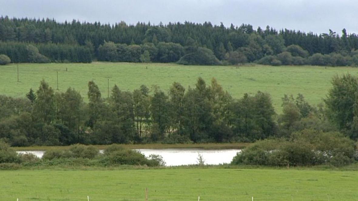Lesy České republiky