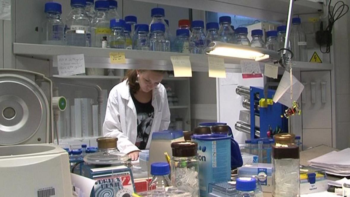 Přípravný výzkum CEITEC