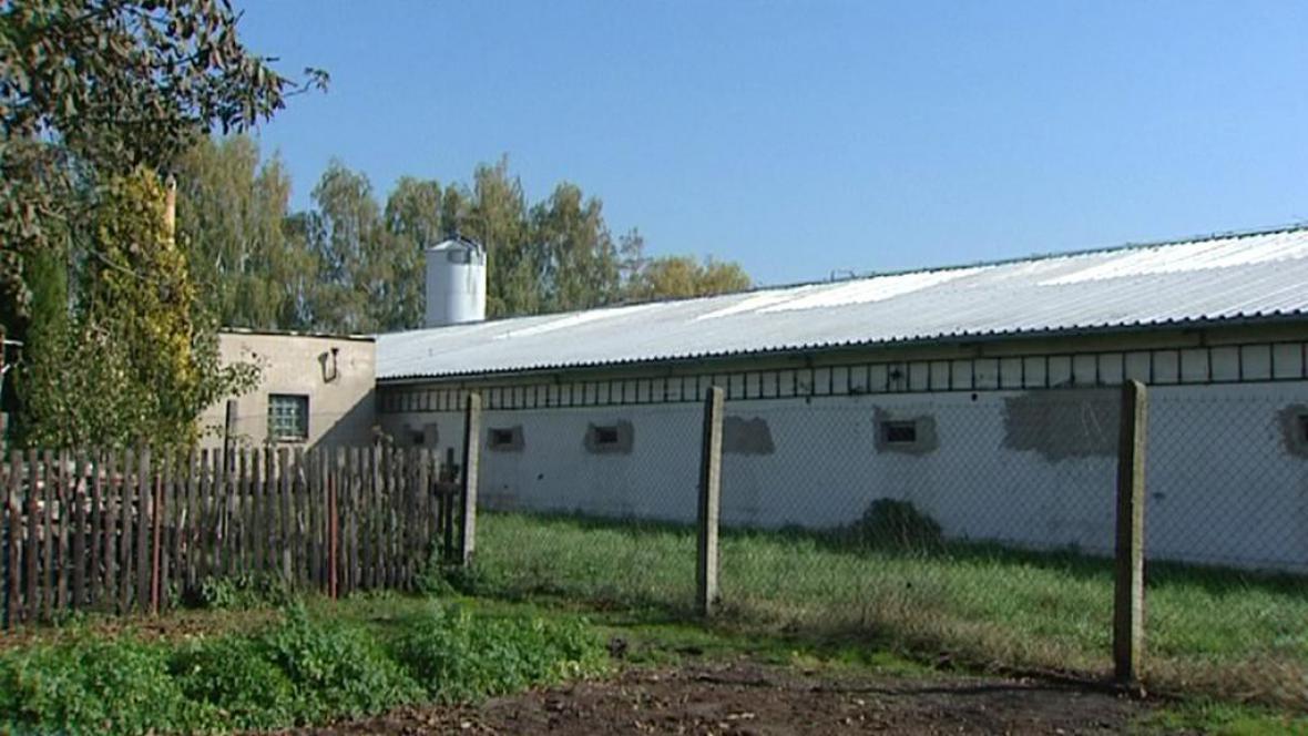 Slepičárna v obci Škudla