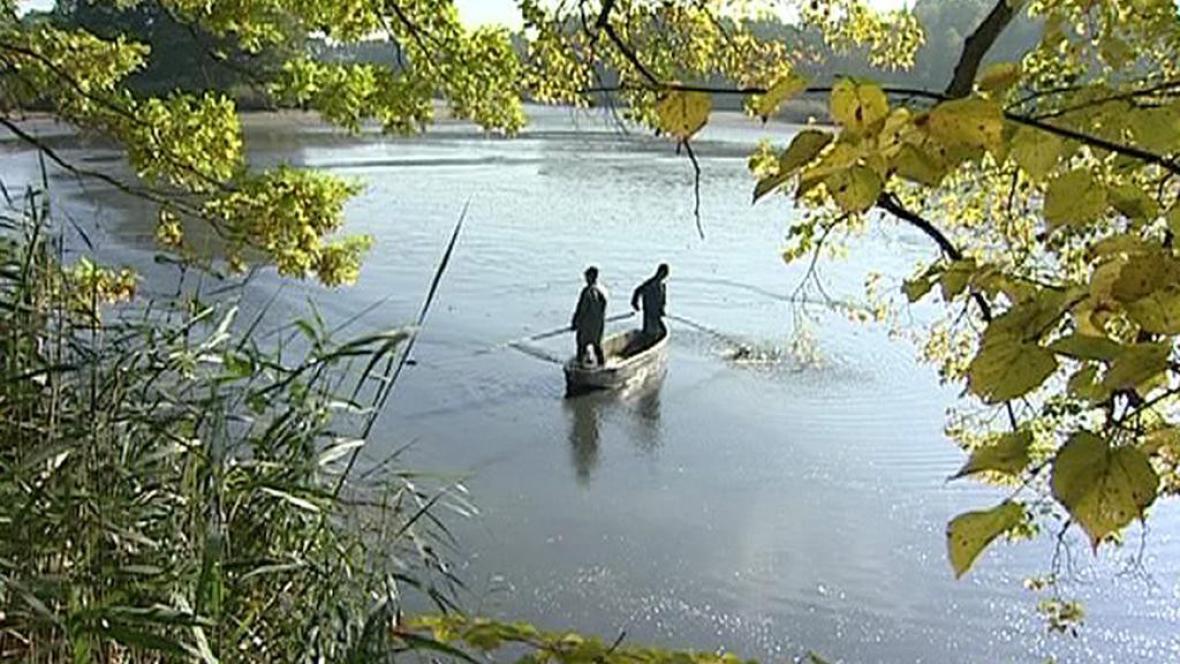 Výlov rybníku v jižních Čechách