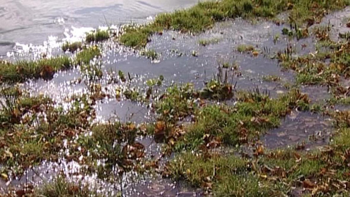 Zaplavený břeh Blanice u Milenovic