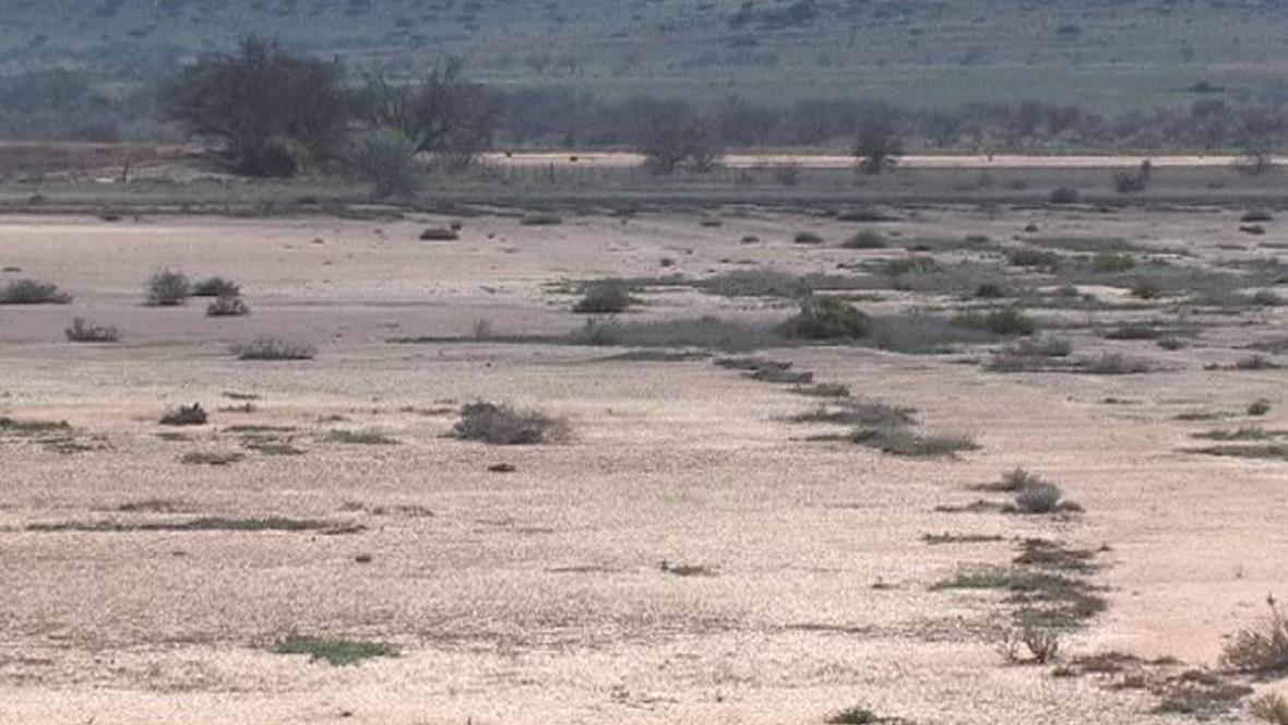Desertifikace