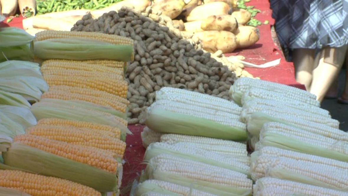 Číňané si pěstují potraviny sami