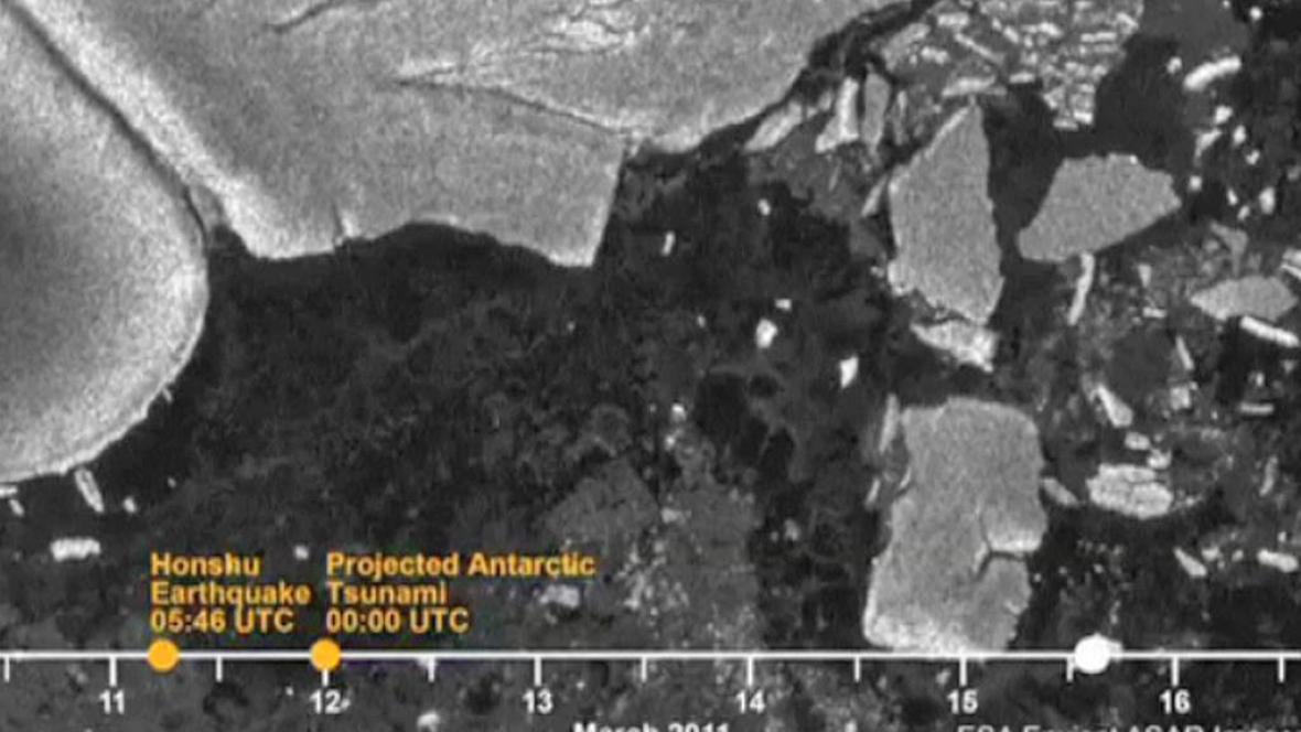 Japonské tsunami zasáhlo i Antarktidu