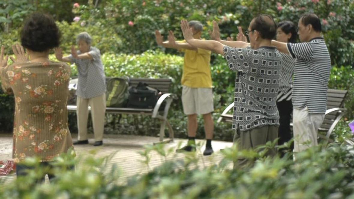 Přznivci hnutí Fa-lun-kung