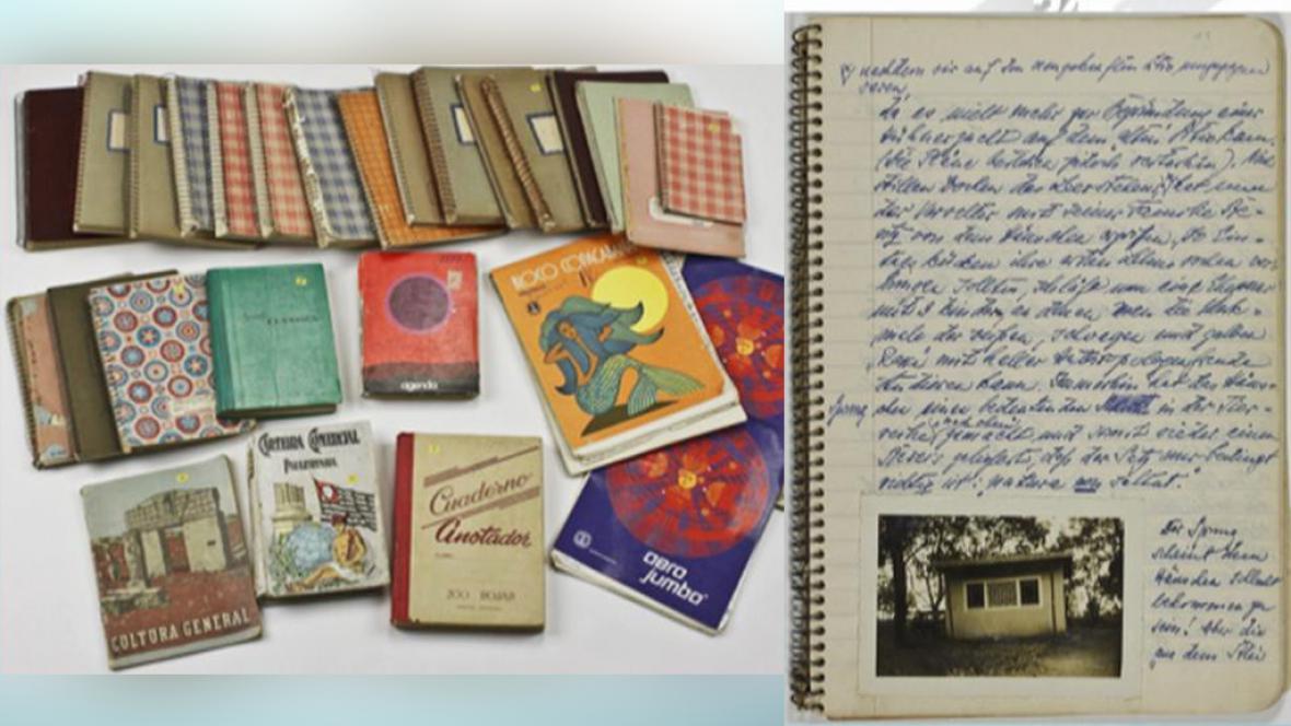 Mengeleho deníky jdou do aukce