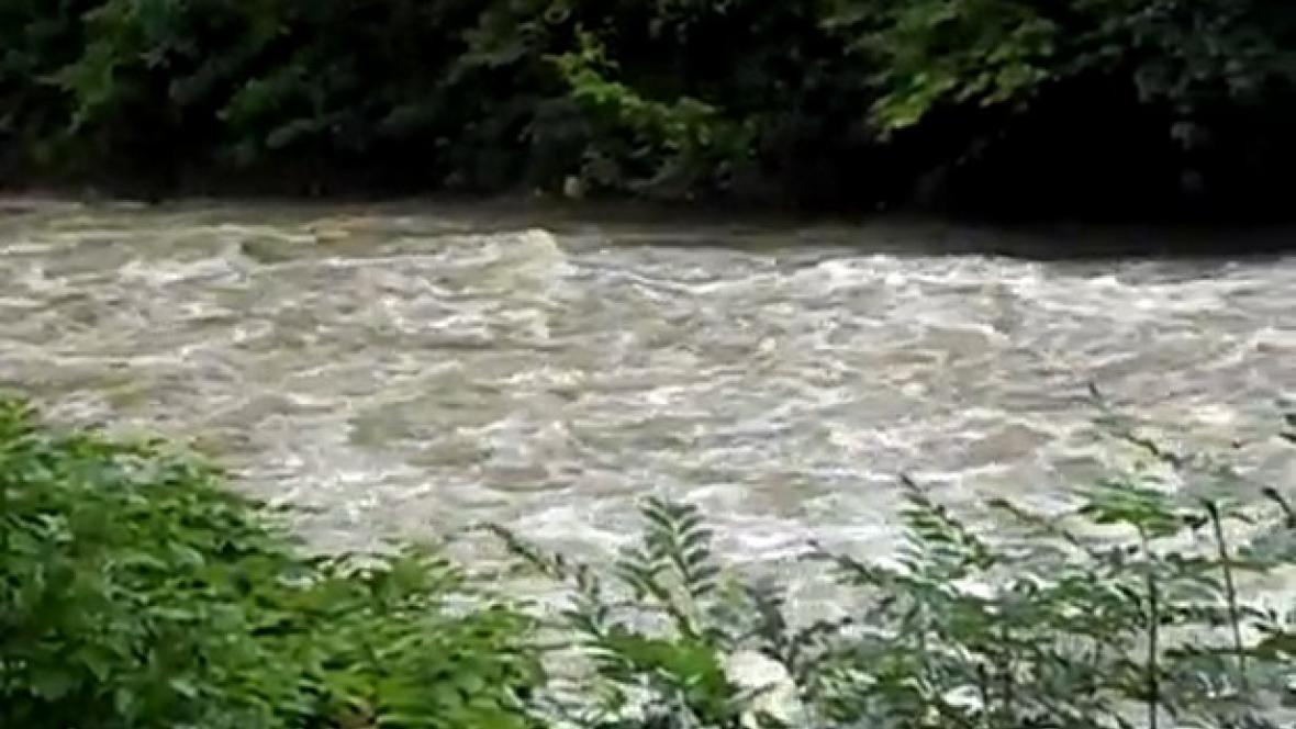 Řeka Olše u Třince
