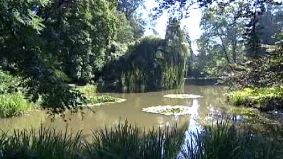 Jezírko v zámeckém parku