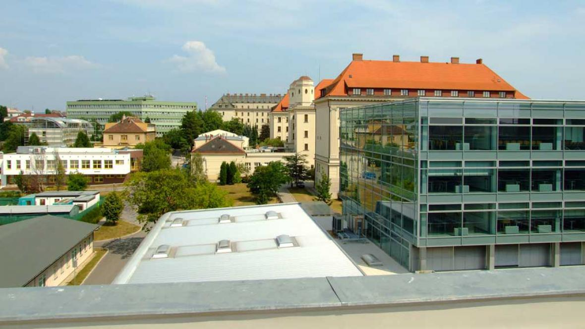 Mendelova lesnická a zemědělská univerzita