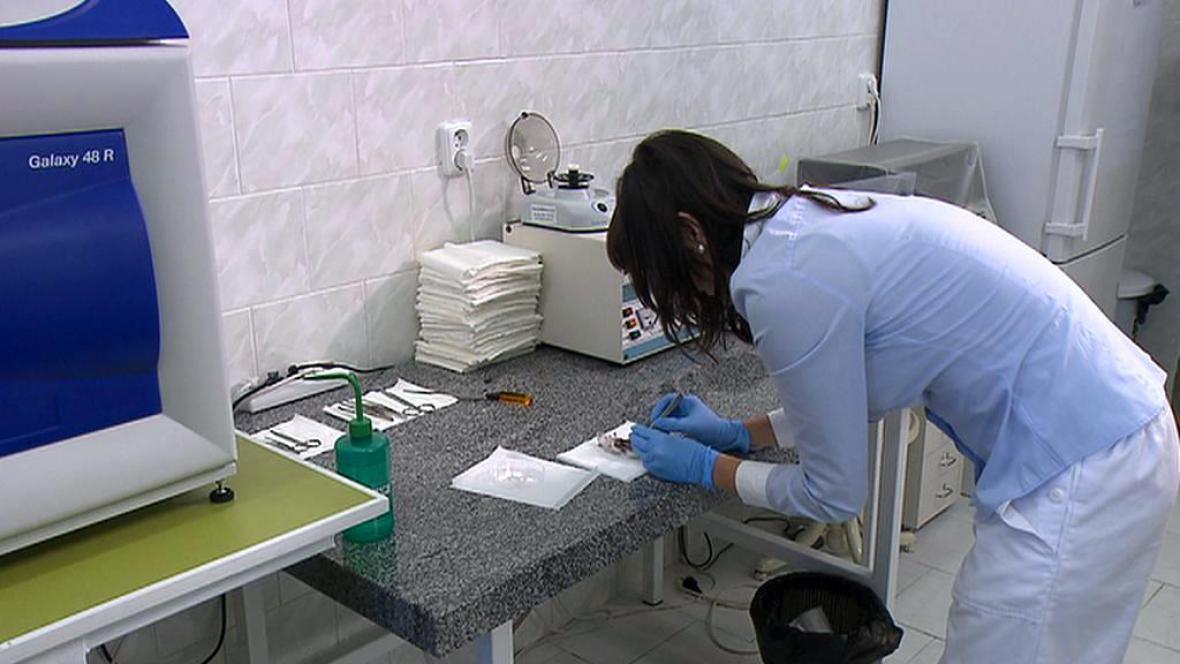 Laboratorní výzkum