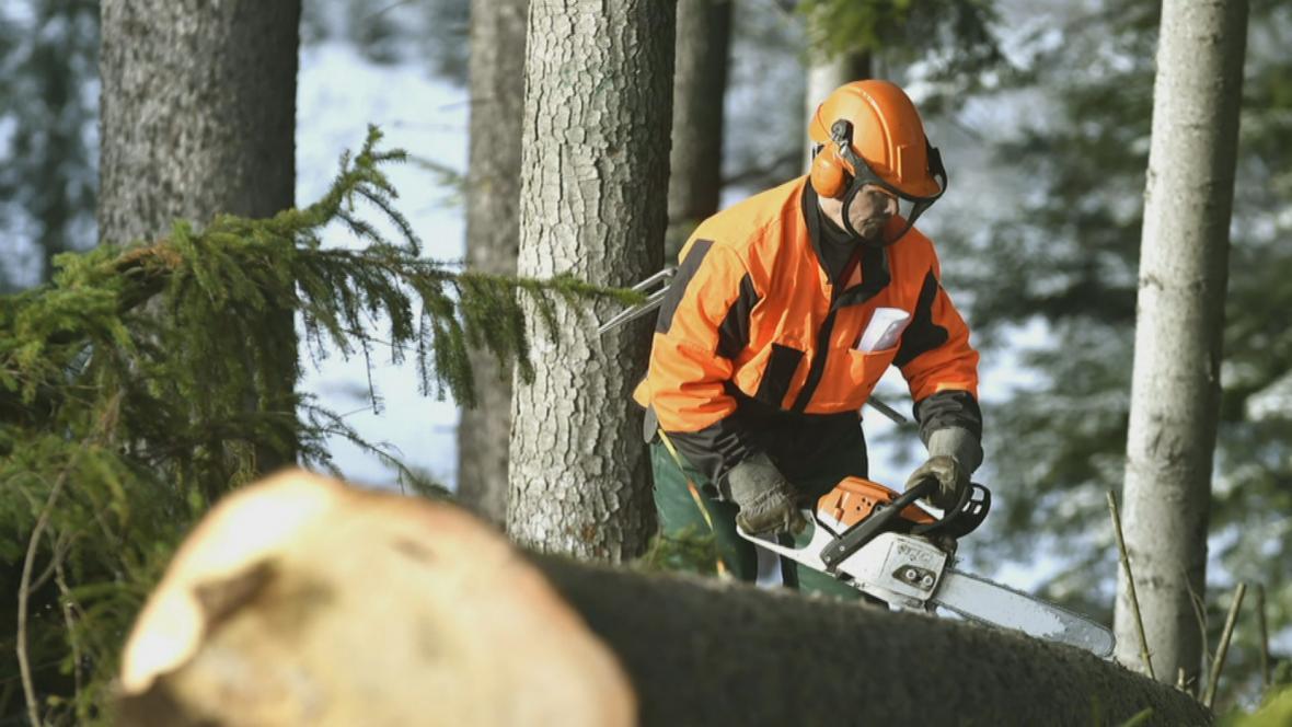 Úklid po vichřici v Českém Švýcarsku