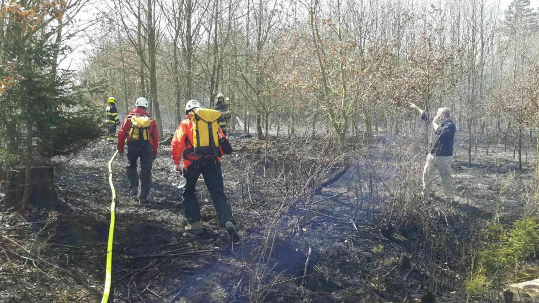 Další požár lesa u Oslavan