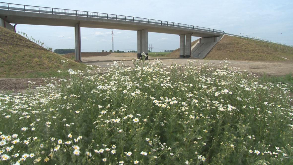 Příprava dálnice D49 může pokračovat