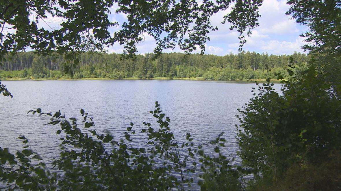 Velkopařezitý rybník