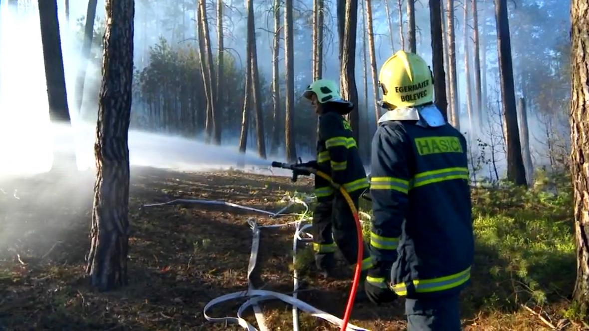 Hasiči při hašení lesa na okraji Plzně