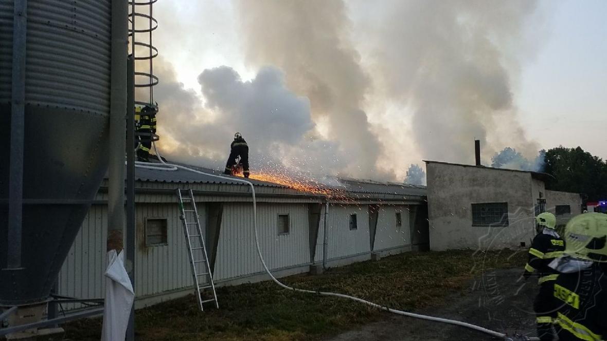 Hasiči při likvidaci požáru drůbežárny