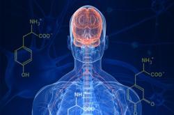 Kde vzniká Parkinson?