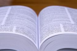 Nový encyklopedický slovník češtin