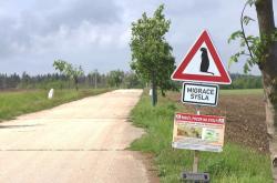 Značka varující řidiče před pohybem syslů