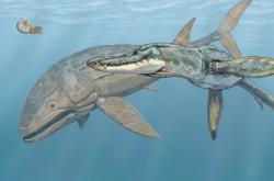 Leedsichthys a útočící dravý Liopleurodon