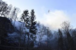 Požár lesa u Železného Brodu