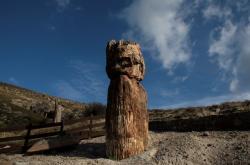 Pravěký zkamenělý strom na ostrově Lesbos