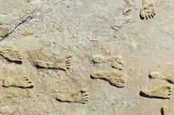 Pravěké stopy staré přes 20 tisíc let