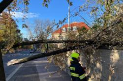 Následky silného větru v Praze