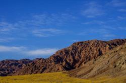 Rozkvetlé Údolí smrti